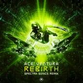 Rebirth (Spectra Sonics Remix) von Ace Ventura