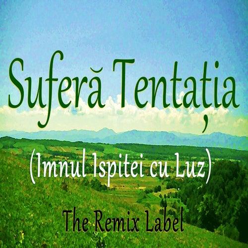Sufera Tentatia by Luz