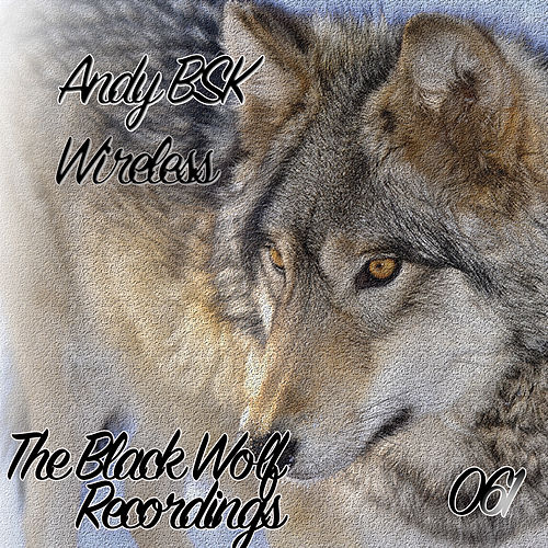 Wireless - Single by Andy Bsk