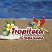 Tropiteca / La Negra Tomasa de Various Artists