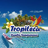Tropiteca / Cumbia Sampuesana by Various Artists