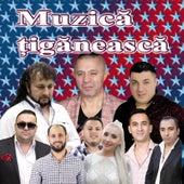 Muzica Tiganeasca by Various Artists