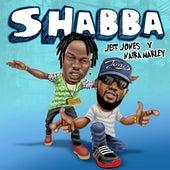 Shabba by Jeff Jones