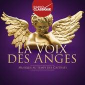 La voix des anges (Radio Classique) von Various Artists
