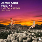 Laid Back with It (Remixes) by James Curd