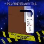 Por Favor No Molestar by Sinfonía Oscura
