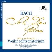 Wege zur Musik: Weihnachtsoratorium de Christian Brückner