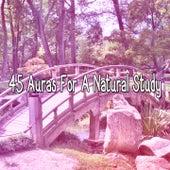 45 Auras For A Natural Study von Massage Therapy Music