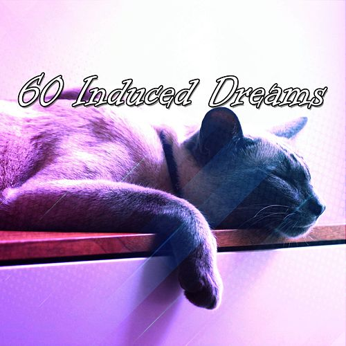 60 Induced Dreams von Best Relaxing SPA Music