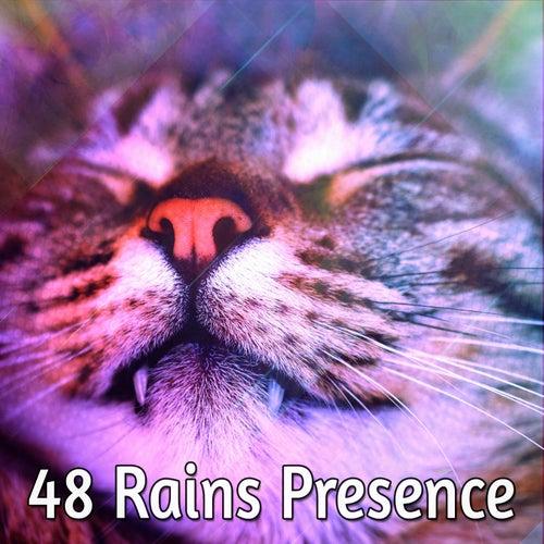 48 Rains Presence von Best Relaxing SPA Music