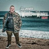 Winds & Waves Remixes by Illuminate