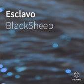 Esclavo by Black Sheep
