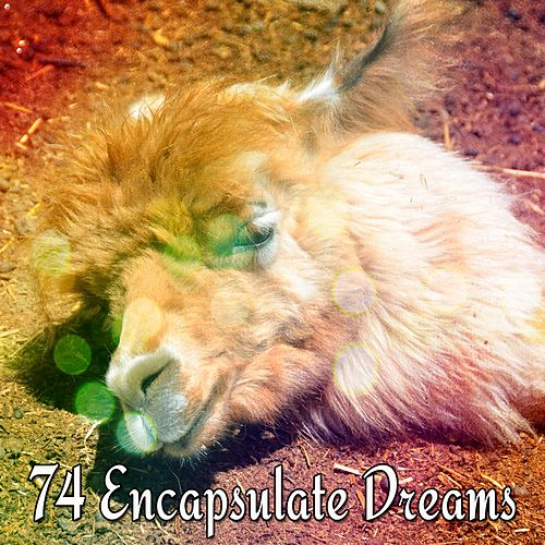 74 Encapsulate Dreams by Lullaby Land