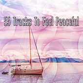 55 Tracks To Feel Peaceful de Zen Meditation and Natural White Noise and New Age Deep Massage