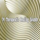 74 Therapeutic Healing Sounds de Meditación Música Ambiente