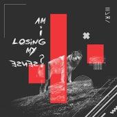 Am I Losing My Sense? de Hori