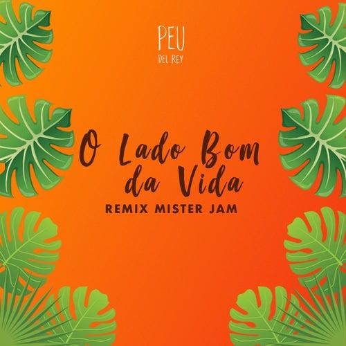 O Lado Bom da Vida (Remix Mister Jam) de Peu Del Rey