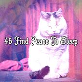 45 Find Peace To Sleep de White Noise Babies