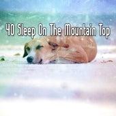 40 Sleep On The Mountain Top de Smart Baby Lullaby