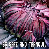 66 Safe And Tranquil de White Noise Babies