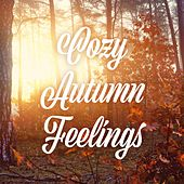 Cozy Autumn Feelings by Various Artists