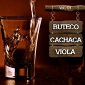 Buteco, Cachaça e Viola, Vol. 1 de Various Artists