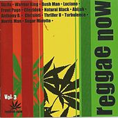 Reggae Now, Vol. 3 by Various Artists