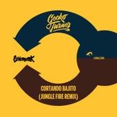 Cortando Bajito (Jungle Fire Remix) de Gecko Turner