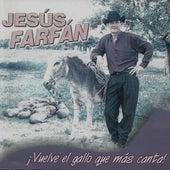 Vuelve el Gallo Que Más Canta de Jesús Farfán