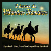 2 Horas de Villancicos Flamencos de Various Artists