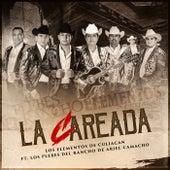 La Careada (feat. Los Plebes Del Rancho De Ariel Camacho) by Los Elementos de Culiacan