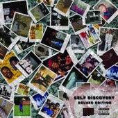 Self Discovery - Ep de Puni