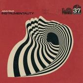 Instrumentality by Jakob Skott