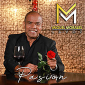 Pasión von Miguel Morales La Voz