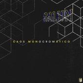 Caos Monocromático by Salun