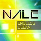 Endless Ocean 2018 by Nale