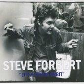 Little Stevie Orbit by Steve Forbert