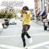 Famous in EDM van Various Artists