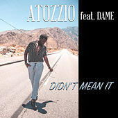 Didn't Mean It by Atozzio