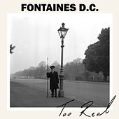 Too Real by Fontaines D.C.