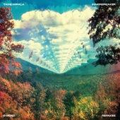 InnerSpeaker B-Sides & Remixes van Tame Impala