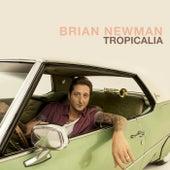 Tropicalia by Brian Newman