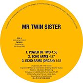 Power of Two / Echo Arms by Mr Twin Sister