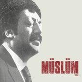 Müslüm Baba von Müslüm Gürses