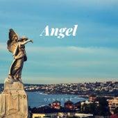 Angel de Genuene