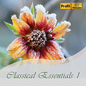 Classical Essentials, Vol. 1 di Various Artists