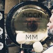 Moon (Synodic Revolution) by Mein Freund Max