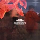 (The) Evening de Ford (electro-pop)