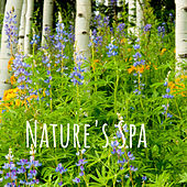 Nature's Spa by Nature Sounds (1)