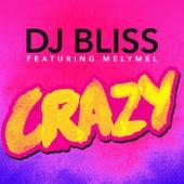Crazy de DJ Bliss
